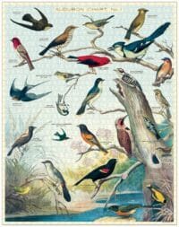 - Vögel – Vintage Puzzle - 1000 Teile