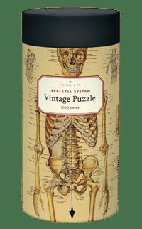 - Anatomie – Vintage Puzzle - 1000 Teile