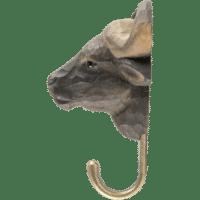 WILDLIFE GARDEN - Handgeschnitzter Haken – Afrikanischer Büffel - Wandhaken aus Holz